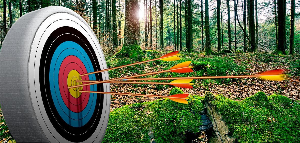 archery-board